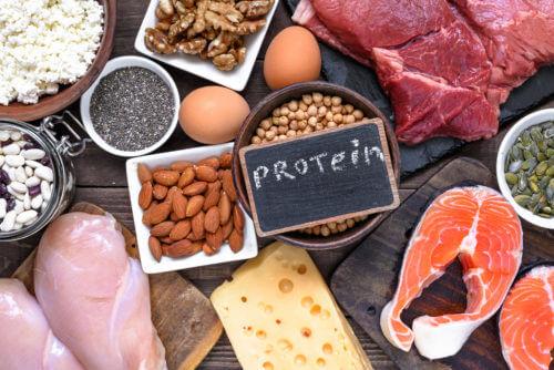 タンパク質の摂取方法3つのポイントと良質なタンパク質とは?